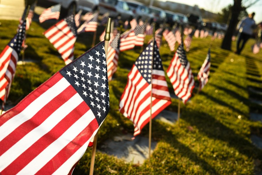 Flags+placed+in+preparation+for+Veterans+Day+are+illuminated+by+morning+light%2C+Utah+Veterans+Memorial+Cemetery%2C+Bluffdale%2C+Utah%2C+Nov.+10%2C+2016.+%28R.+Nial+Bradshaw%29