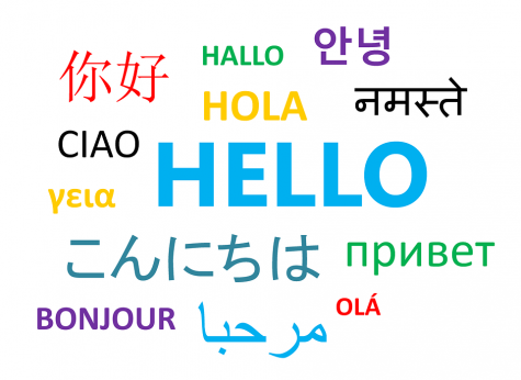 We asked certain teachers: What made you want to learn (and teach) a foreign language?