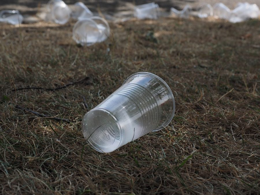 [OPINION] Single-Use Plastics: A Damaging Convenience