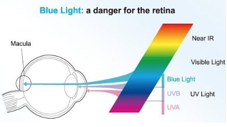 The Effects of Blue Light on the Eyes