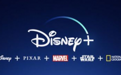 Disney Plus What?