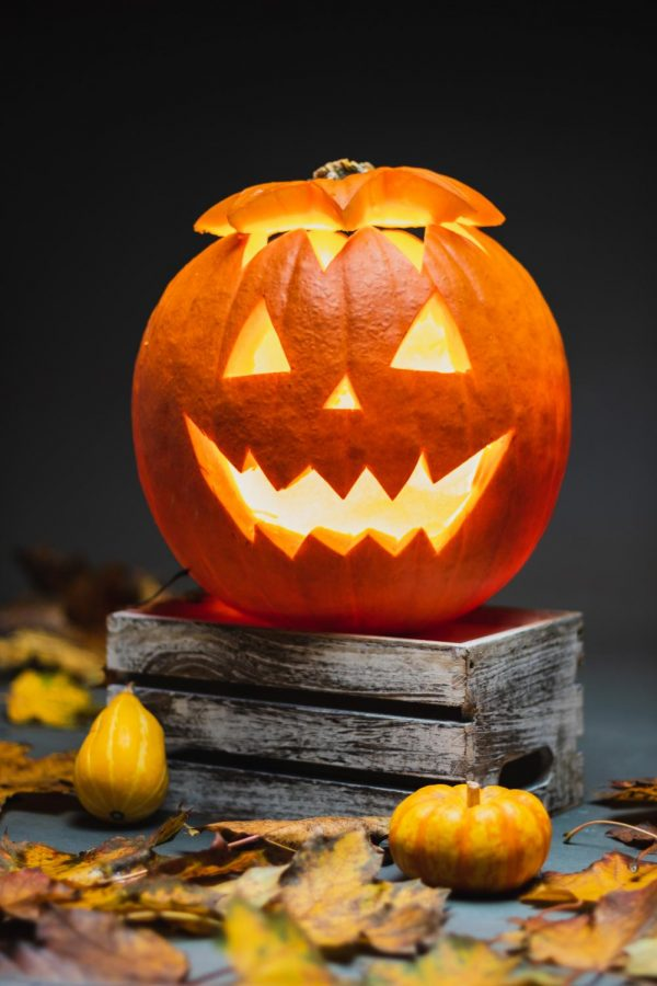 10 things you didnt know about Halloween!